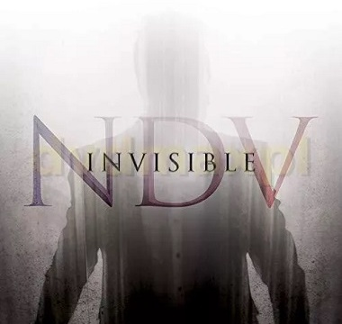 nick-d-virgilio-invisible