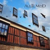 Acute Mind - Under The Empty Sky